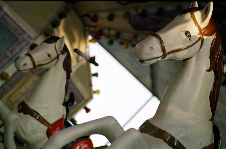 Horse ride at appu ghar